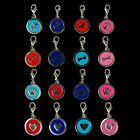 Wholesale 4pcs 25MM Disc Pendants Charms Stainless Steel Lovely Design Pet Tag