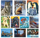 Reeves Art Painting By Numbers Set Artist Collection inc Acrylic Paint & Brush