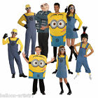 Adult Child DESPICABLE ME Gru Minions Fancy Dress Book Week Party Costume