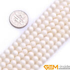 Natural Round Cream white Coral Jewelry Making loose gemstone beads strand 15""