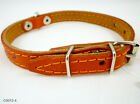 "Genuine Leather Dog Collar 10""-13"" neck Puppies, Poodle, Chihuahua"