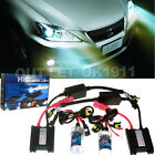 PROFESSIONAL XENON HID CONVERSION KIT H1 & H7 6000K & 8000K ALL COLORS/BULBS