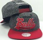 Chicago Bulls Mitchell and Ness NBA E-Print Tailsweep Snapback Cap Hat