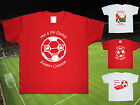 CHARLTON ATHLETIC Football Baby/Kids/Childrens T-shirt Top Personalised-Any team