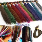 feather hair pieces - 5pc Grizzly 16