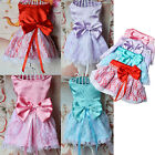 New Cute Princess Bowknot Dog Pet Puppy Dress Lace Clothes Costume Wedding Gown