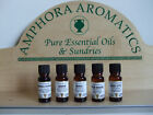 1 Amphora Aromatics Absolute (5% diluted) Aromatherapy  Oils, 10ml