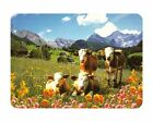 NEW Glass Chopping Board Alpine Scene Cows White Kitchen Worktop Saver 3 Sizes