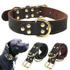 Didog Soft Real Genuine Leather Dog Collars Adjustable For German Shepherd K9