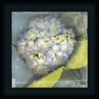 Antique Bloom by Erin Cark Vintage Floral Framed Art Print Décor Picture 12x12