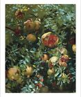 "JOHN SINGER SARGENT ""Pomegranates, Majorca"" ON CANVAS! various SIZES, BRAND NEW"