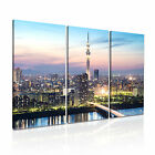 Japan 3 Cityscape Asia Canvas 3A Framed Printed Wall Art ~3 Panels