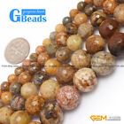 "Round Faceted Natural Crazy Lace Agate Loose Beads 15"" 6-14mm for Jewelry Making"