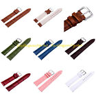 Hot Women Men Leather Wristwatch Band Strap Stainless Steel Buckle Pin 12-24mm