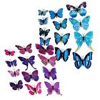 New Art Design Decal Wall Stickers Home Decor Room Decorations 3D Butterfly  Hot