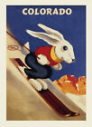 Rabbit Ski Skiing Mountains of Colorado USA Sport Vintage Poster Repro FREE S/H