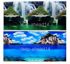 """20""""tall (50cm)Fish Tank Aquarium Background 2 sided picture IMAGE wall Decor:14"""