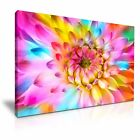 LARGE Colorful Flower Canvas Wall Art Picture Print ~ More Size