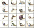 925 Sterling Silver New Hot Popular Series Bead Fit European Charm Bracelet A
