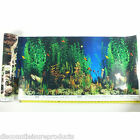 "12"" Double Sided Aquarium Background Backdrop Fish Tank Reptile Marine DB102"