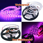 DC 12V 18W 5M 3528 SMD 300 LED Strip Light DC Non-waterproof Waterproof Purple