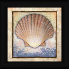 Shell Ed Wargo 12x12 Bay Scallop Seashell Framed Art Print Picture Wall Decor