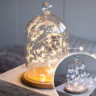 Glass Bell Jar Dome with 40 Micro LED Star Battery Fairy Lights & Wooden Base