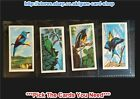 ☆ Northern Co-Operative Society - Tropical Birds 1962 (G) *Please Select*