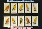 ☆ Player's - Aviary and Cage Birds 1933 (G) ***Pick The Cards You Need***