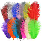 "10""-12"" Long Fluffy OSTRICH FEATHERS - Packs of 1, 5, 10, 20, 50 - Arts Crafts"