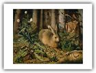 "Hans Hoffmann : ""A Hare in the Forest"" (c.1585) — Giclee Fine Art Print"