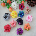10 20 50PCS small Mini rose wholesale wedding flower Decorative 12 color choices