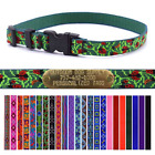 "Lupine 3/4"" Nylon Dog Collar Strap with Free Custom Brass ID"