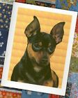 MINIATURE PINSCHER Guildan DryBlend Tee Shirts #0786