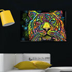 Abstract Tiger Stretched Canvas Print Framed Wall Art Home Decor Animals DIY