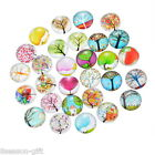 Wholesale 02 Mix Randomly Tree Glass Flatback Scrapbooking Dome Cabochons 20mm