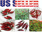 25+ THAI Hot Pepper MIX Seeds 6 Varieties Heirloom NON-GMO Purple Long Dragon US