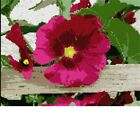 Petunia On Fence Needlepoint Kit or Canvas (Floral /Flower /Nature)