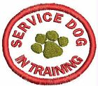 Service Dog In Training Patch Small Circle Working Dog Patch