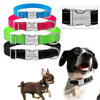 Reflective Custom Cat Dog Collar Engraved Metal Buckle Personalized Doggy Collar