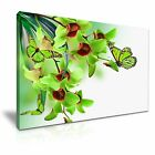 Green Butterfly Flower Canvas Wall Art Picture Print Decoration 5 Sizes Choose