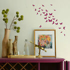 Butterfly Wall Sticker! Bargain Transfer Butterflies Graphic Decal Decor Stencil