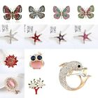 Butterfly Alloy Brooch Rhinestone Women Diamante Wedding Crystal Brooch Pins new