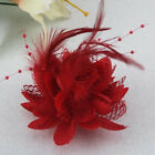 Flower Feather Fascinator Bead Beak Hair Clip Brooch Pin Lady Day Ascot Races