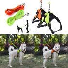 Pet Retractable Dog Puppy Collar with Integrated Leash & Grab Handle