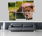 Cheetah in the Jungle Removable Self Adhesive Wall Picture Poster 1169