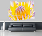 Purple Water Lily Flowers Removable Self Adhesive Wall Picture Poster 1239