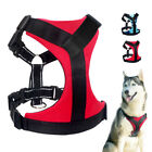 Safety Reflective Padded Dog Harnesses Small Medium Large Adjustable Blue Red