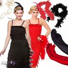 Ladies Adults 1920s 20s Flapper Charleston Gatsby Fancy Dress Outfit Costume Kit