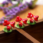 2PCS Cute Mini Resin Mushrooms Fairy Garden Bonsai Doll House Decoration new JR